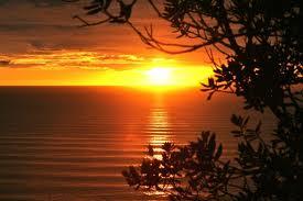 Wainui sunrise